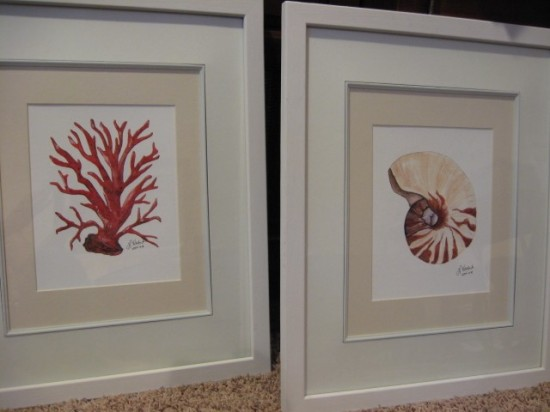 seashell prints