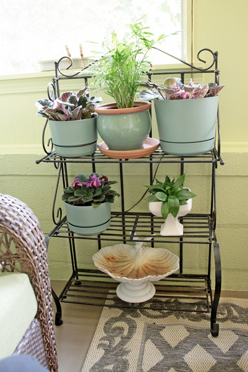 130815336691 additionally Whats In A Puddle further 999978964 furthermore Terrace as well Rustic Furniture. on garden treasures plant stand