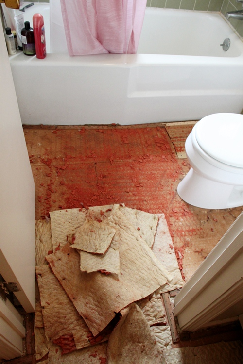Why Not To Put Carpet In A Bathroom Southern Hospitality