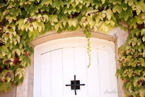 Sonoma Ca Wine Country Southern Hospitality
