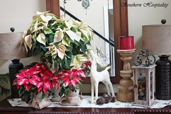 Pretty poinsettias for christmas southern hospitality for Foyer christmas decorating ideas