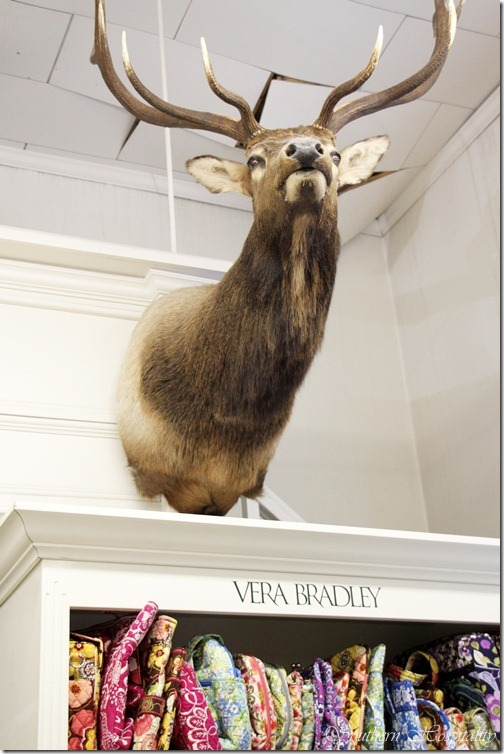Deerhead Sylva store