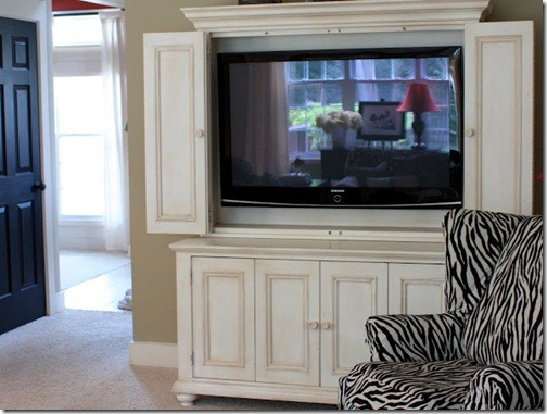 zebra chair familyroom
