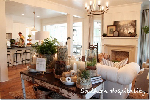 Southern Home Living Rooms - Interior Design