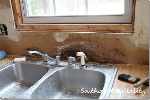 kitchen gutting sink