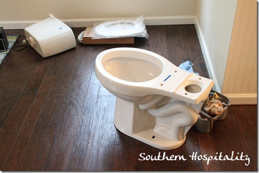 Lowes Aquasource toilet