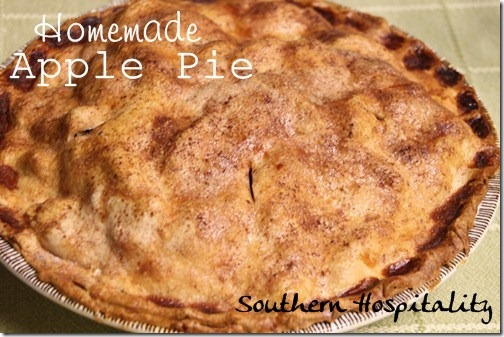 Homemade Southern Apple Pie Recipe