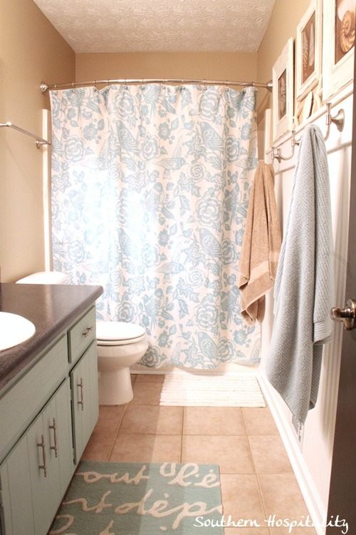 Guest-bath-shower-curtain.jpg
