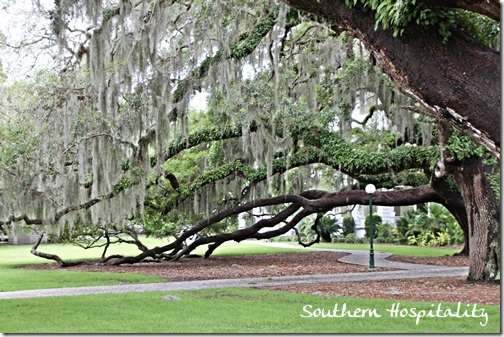 Beautiful Jekyll Island Club Southern Hospitality