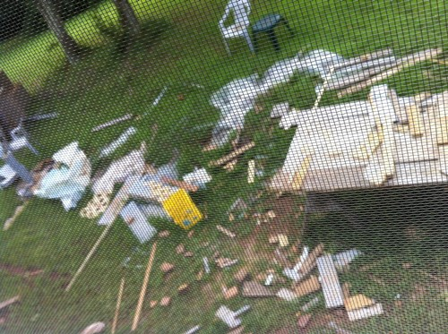 backyard debris