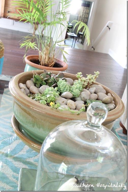 tabletop garden