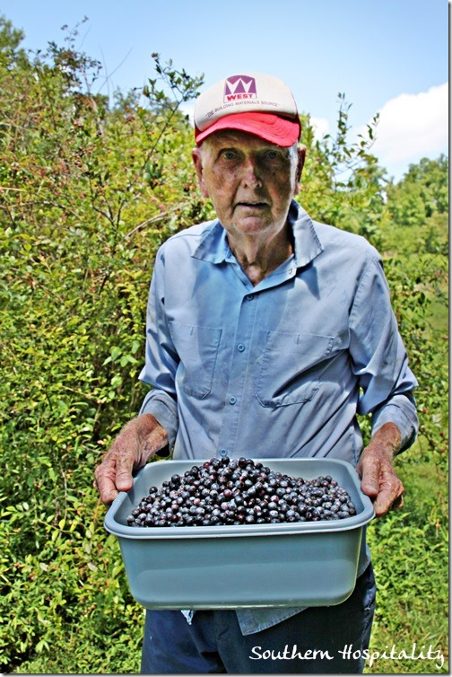 dad and the blueberries