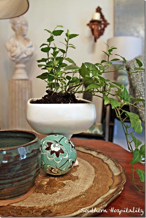 ivy in white planter