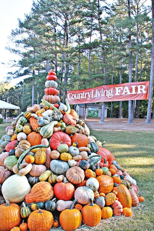 the country living fair at stone mountain southern