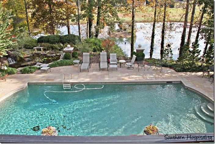 pool and pond
