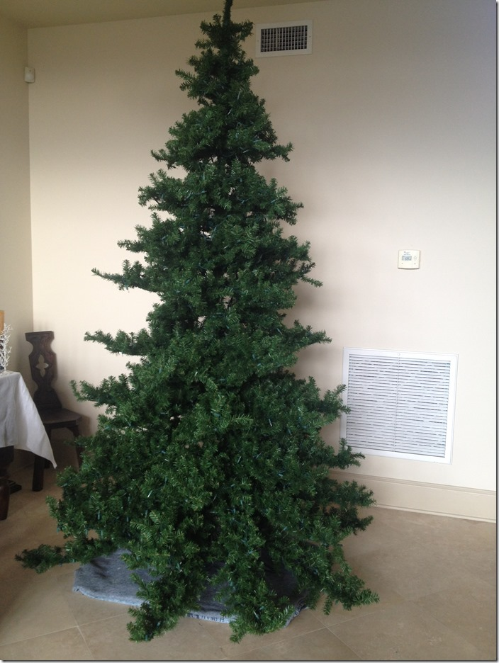Lauren tree undecorated