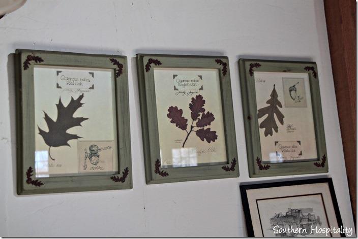 oak leaf botanicals