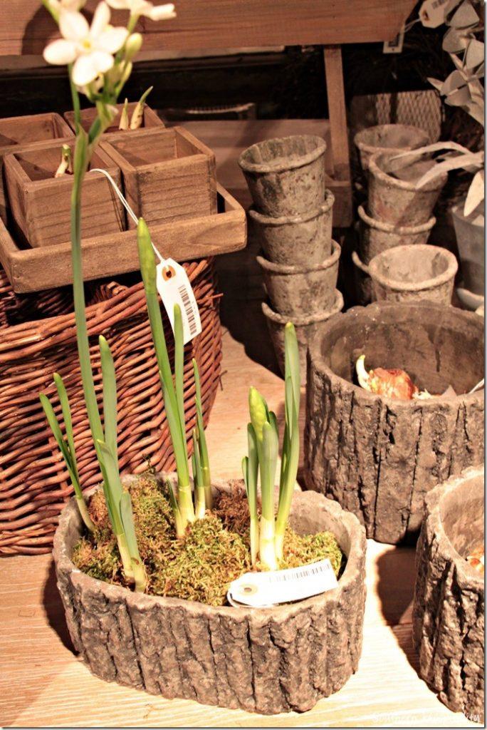 vagabond vintage planter