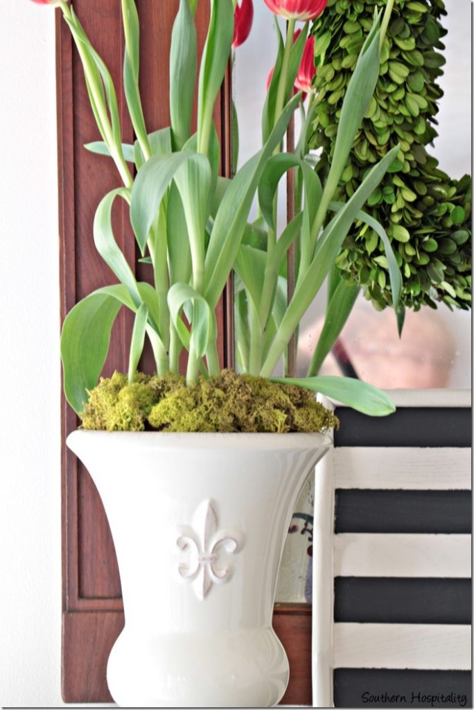 urn with tulips