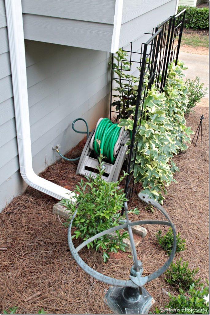 hose reel behind trellis
