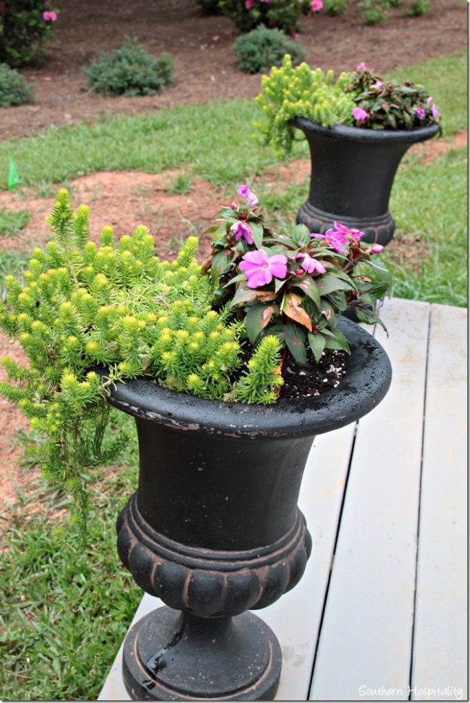 urns planted on porch