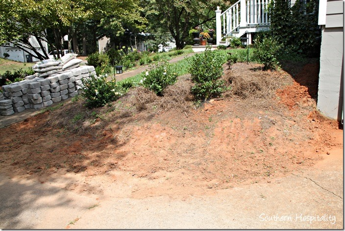 bank of dirt before (2)