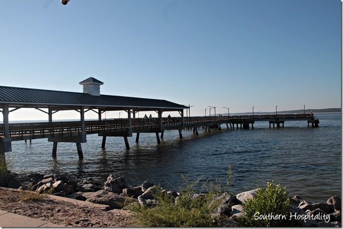 Things To Do In St Simons Island Ga