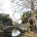 city-park-bridge_thumb.jpg