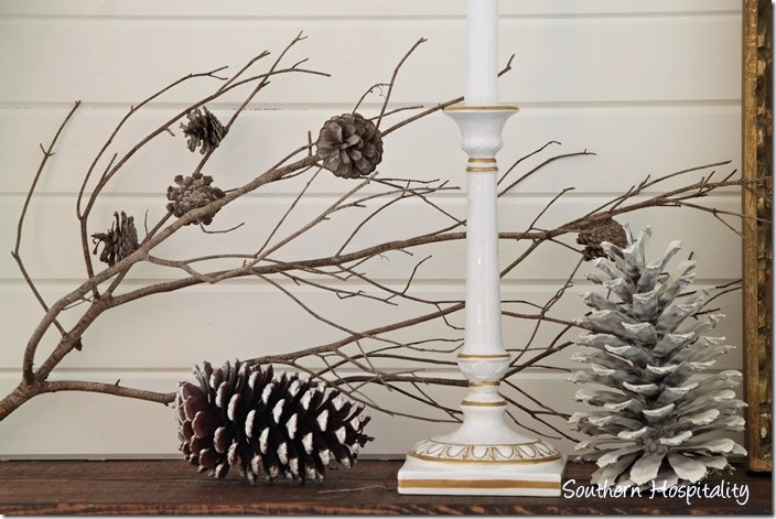 winter branches and pinecones
