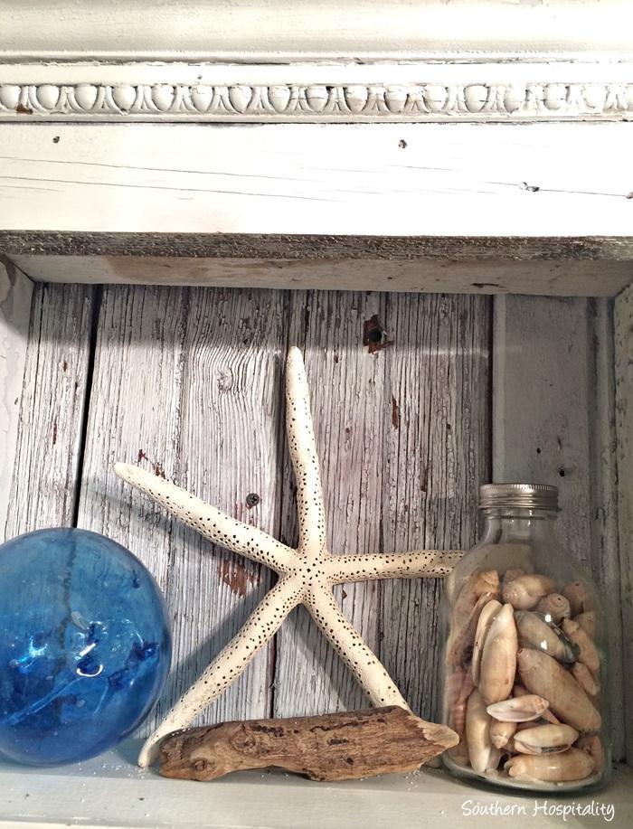 shells vignette (1)