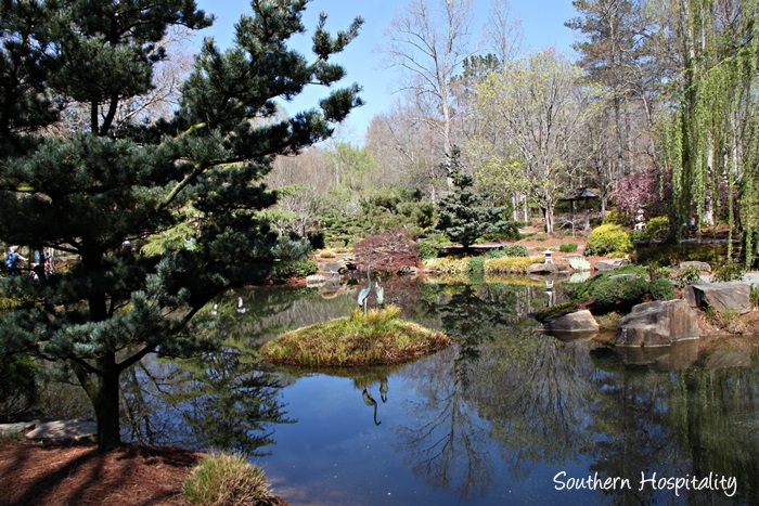 Gibbs Gardens073_039