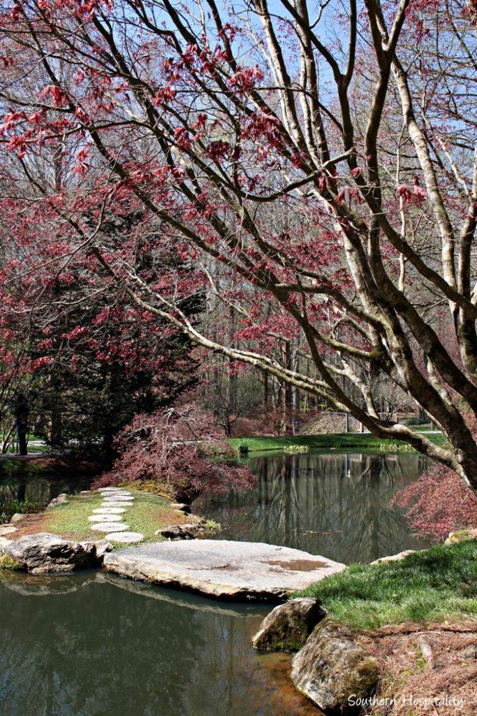 Gibbs Gardens093_057