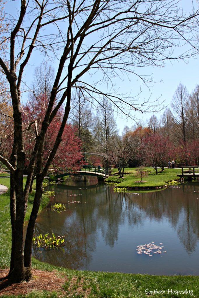 Gibbs Gardens098_061