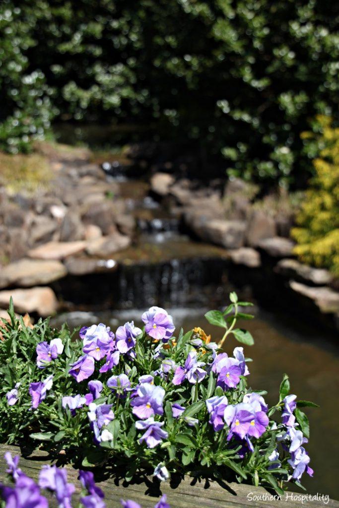 Gibbs Gardens151_093