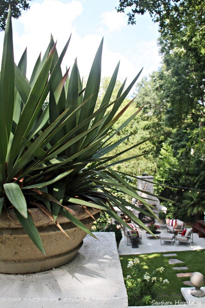 backyard paradise 074_20150723