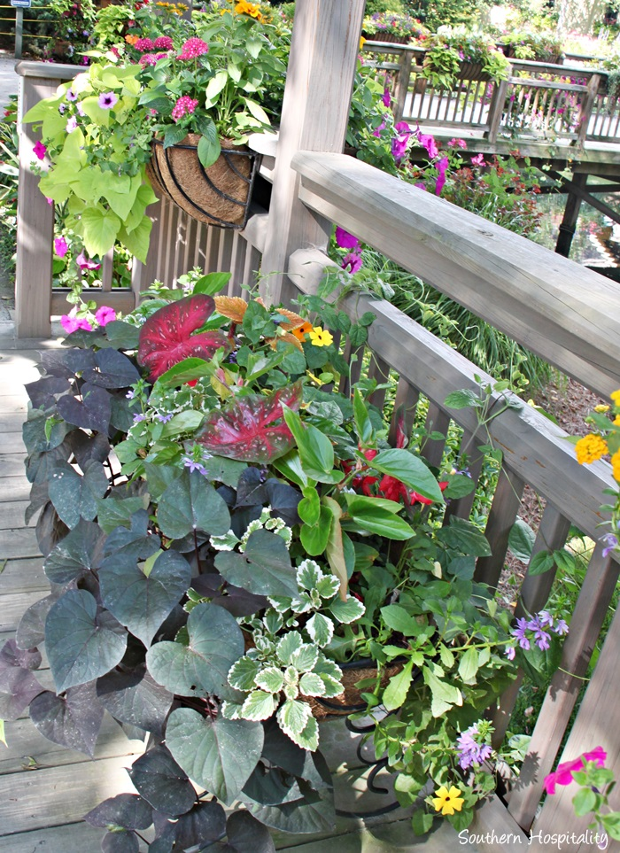 gibbs gardens024_20150625