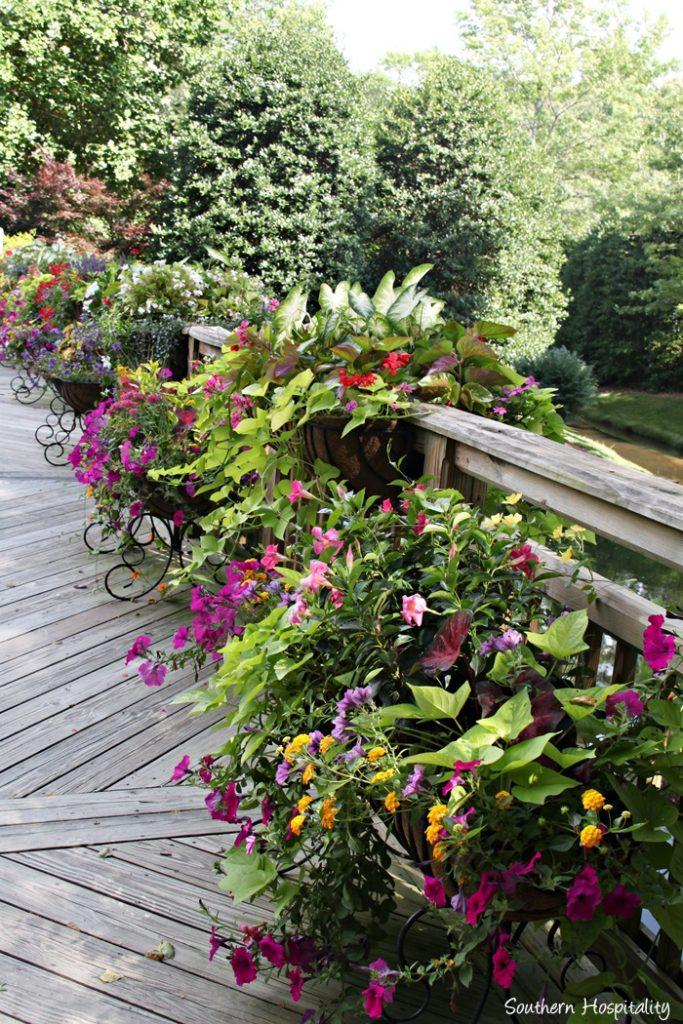 gibbs gardens026_20150625