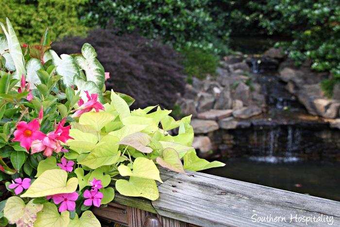 gibbs gardens029_20150625