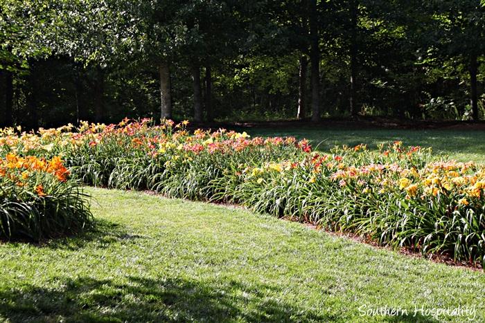 gibbs gardens047_20150625