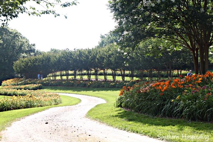 gibbs gardens048_20150625