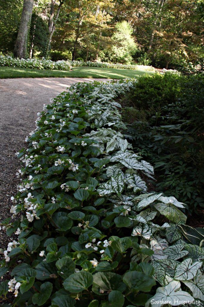 gibbs gardens073_20150625