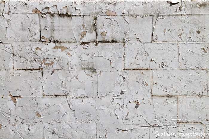 block wall peeling paint