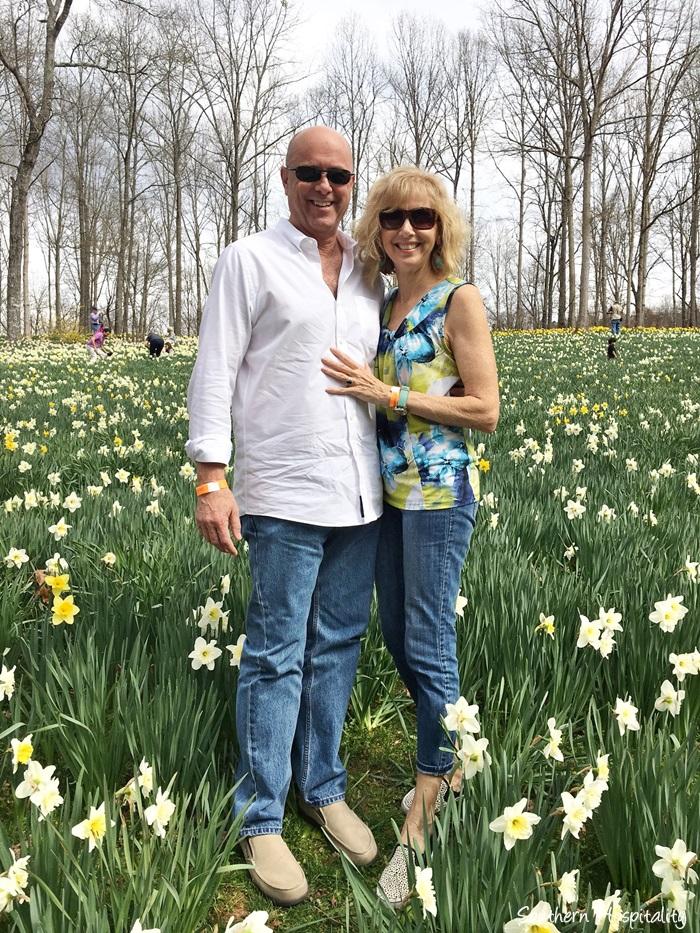gibbs gardens daffodils001