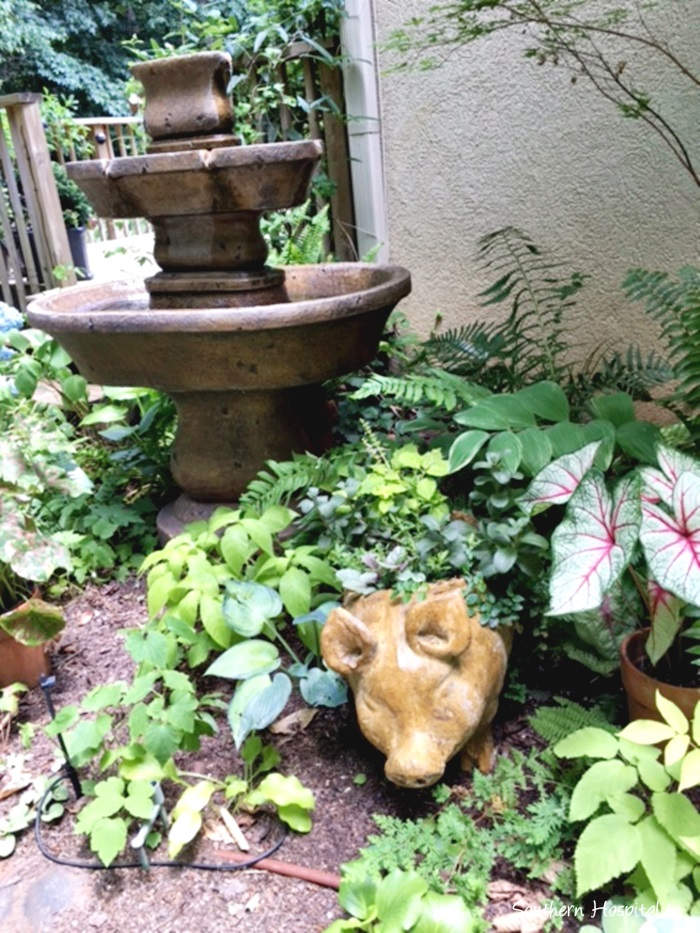 hydrangea festival gardens002