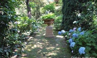 Hydrangea Garden Tour: Ryan Gainey's Home