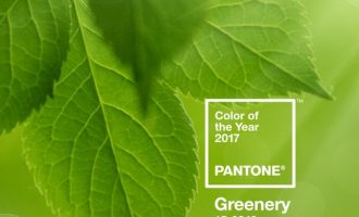 Greenery:  Pantone's Color of the Year