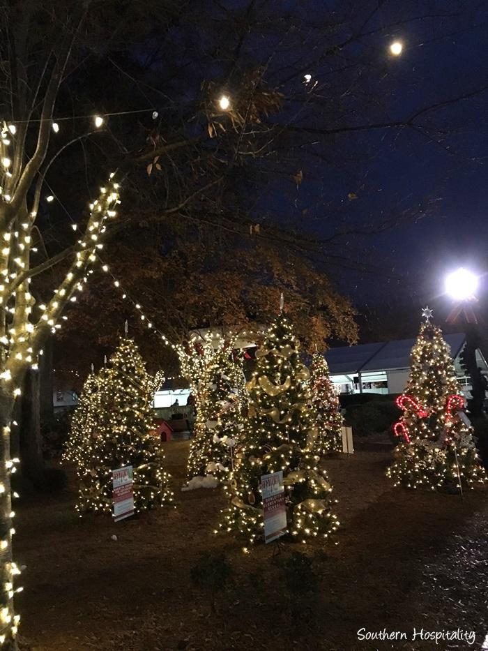 marietta-square-christmas032