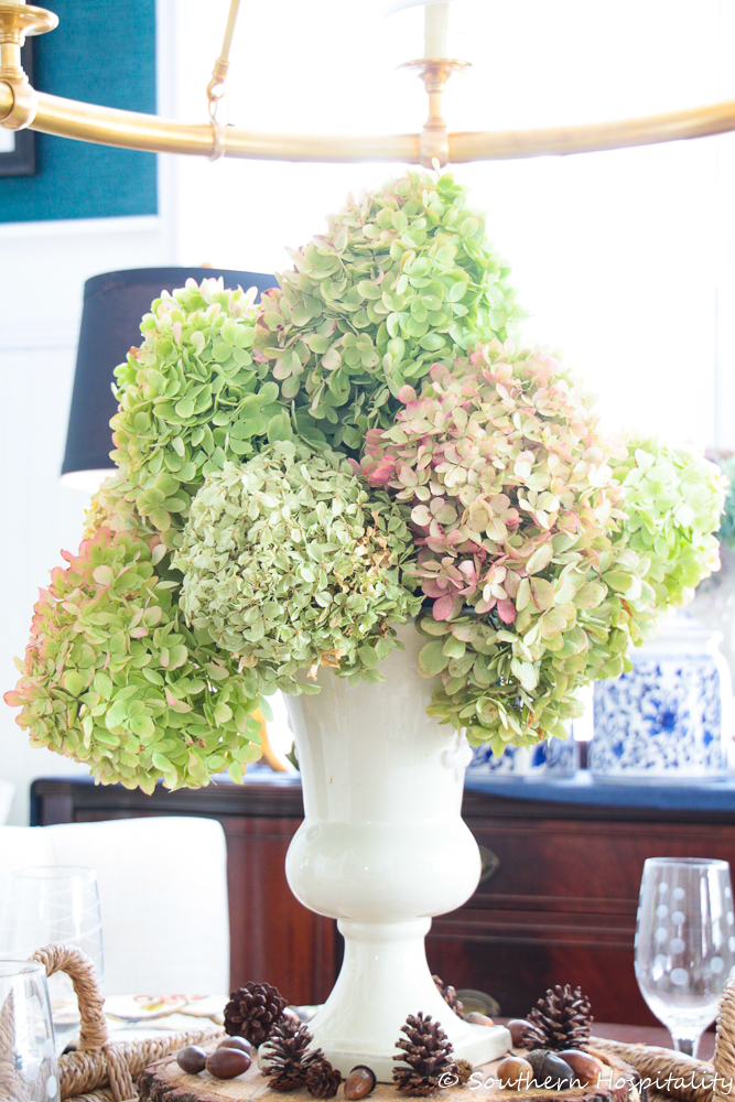 how to dry limelight hydrangeas